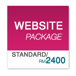 WEBSITE PACKAGE Standard